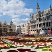 Grande Place Bruxelles Europe Voyage