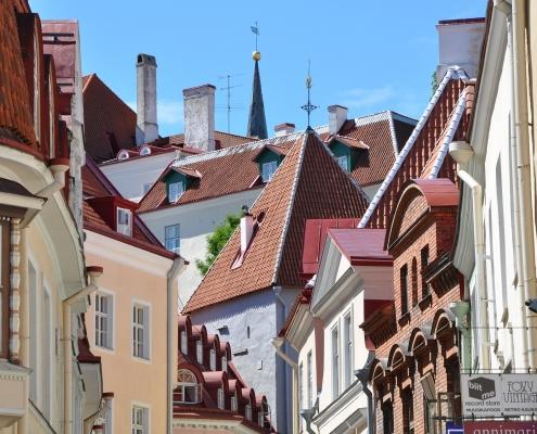 Tallinn Estonie Europe Voyage