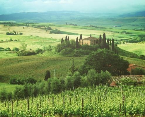 Nature en Toscane Italie Europe Voyage